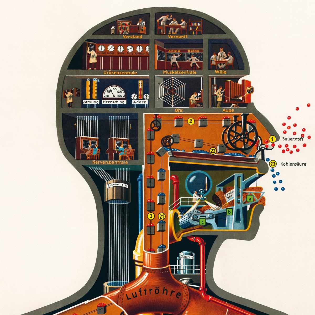 physioklin de der mensch als industriepalast